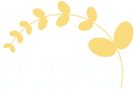 Brin Hamilton Photography and Design Retina Logo